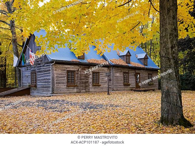 Reconstructed (1980) piece sur piece cottage style log home facade in autumn, Quebec, Canada. This image is property released. CUPR0267