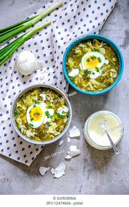 Spinach soup with boiled eggs and sour cream