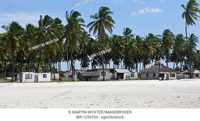 The village of Jambiani, Zanzibar, Tanzania, Africa