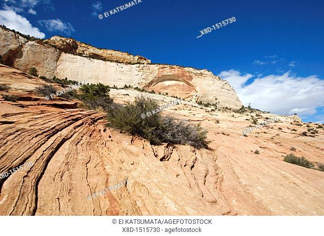 Sedimentary sandstone and arch at Zion National Park, Utah, USA