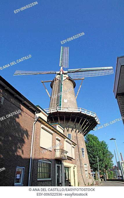 Rode Leeuw windmill in Gouda the Netherlands