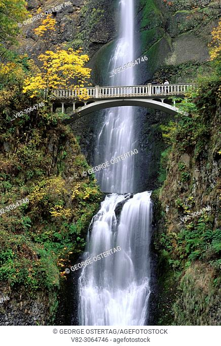 Multnomah Falls, Mt Hood National Forest, Columbia River Gorge National Scenic Area, Oregon