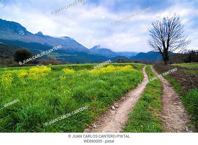 Rural landscape, Ramales de la Victoria, Cantabria, Spain