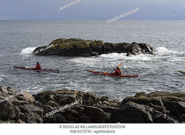 Kayakers off East Sooke Park, near Victoria, British Columbia, Canada