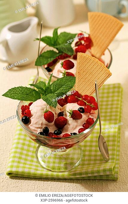 Home made ice cream with wild berries