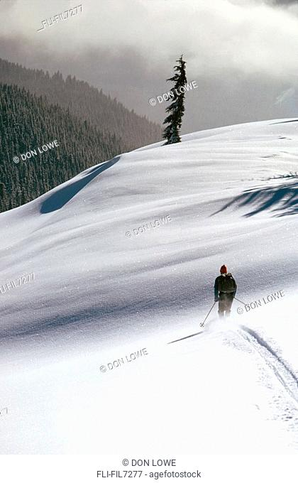 Cross Country Skier, Northern Oregon