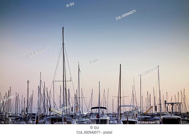 Marina, French Riviera, Cannes, France