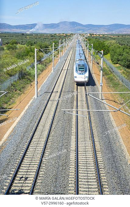 AVE high-speed train traveling along La Mancha. Ciudad Real province, Castilla La Mancha, Spain