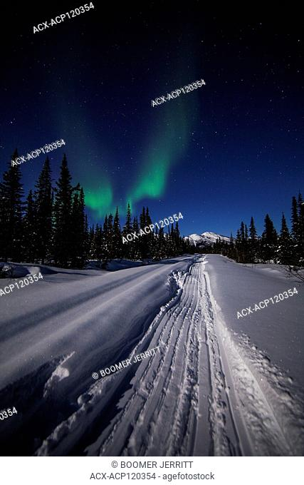 Northern lights dance across a clear star studded sky along the Heritage Canol Trail. Yukon Territory, Canada