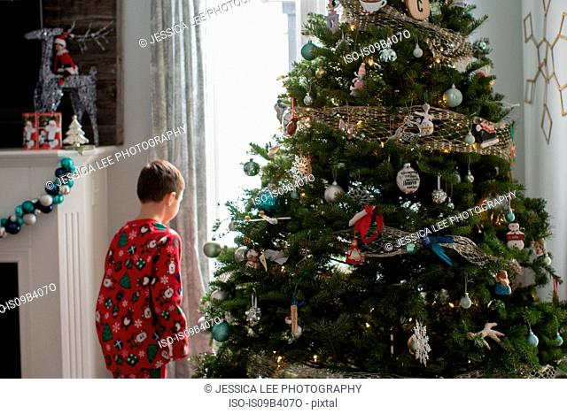 Boy by christmas tree looking out of window