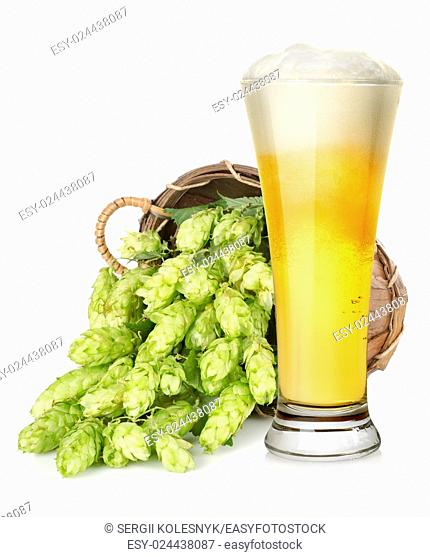 Light beer and hop in basket isolated on white background
