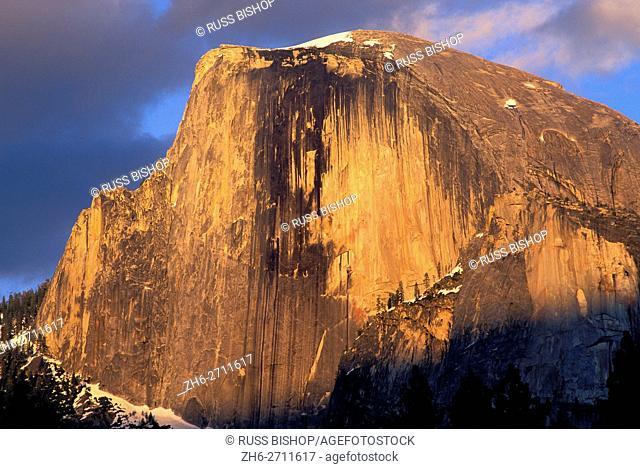 Evening light on Half Dome, Yosemite Valley, Yosemite National Park, California USA