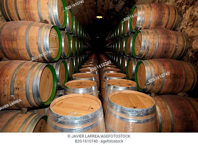 Reserve wine barrels, Marques de Riscal winery, Elciego, Rioja Alavesa, Alava, Basque Country, Spain