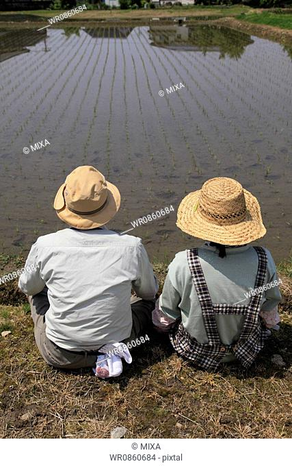 Two Farmers Sitting and Looking Rice Paddy in Spring