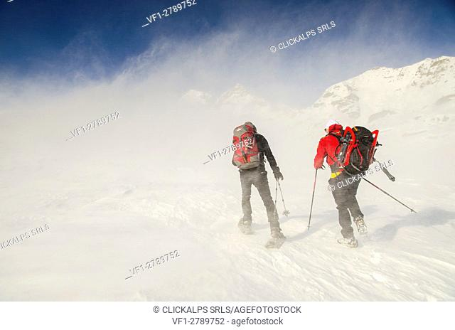 Alpinists advance in the cold wind (Soana valley, Gran Paradiso National Park, Piedmont)