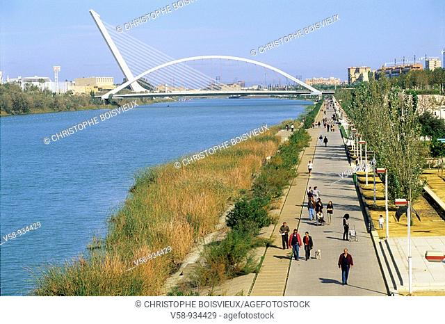 Guadalquivir river and Alamillo bridge -it was built as part of infrastructure improvements for Expo 92-, Seville, Andalusia, Spain