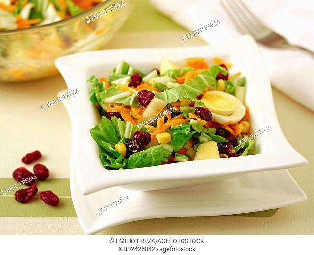 Chinese cabbage salad with cranberries