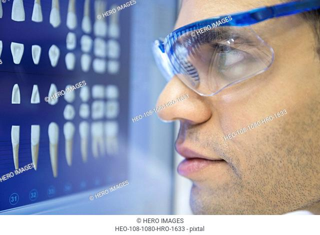 Focused dentist in goggles examining tooth x-rays