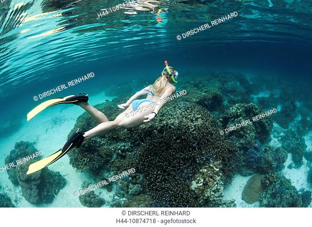 Schnorcheln in der Risong Bay, Risong Bay, Mikronesien, Palau, Snorkeling at Risong Bay, Risong Bay, Micronesia, Palau