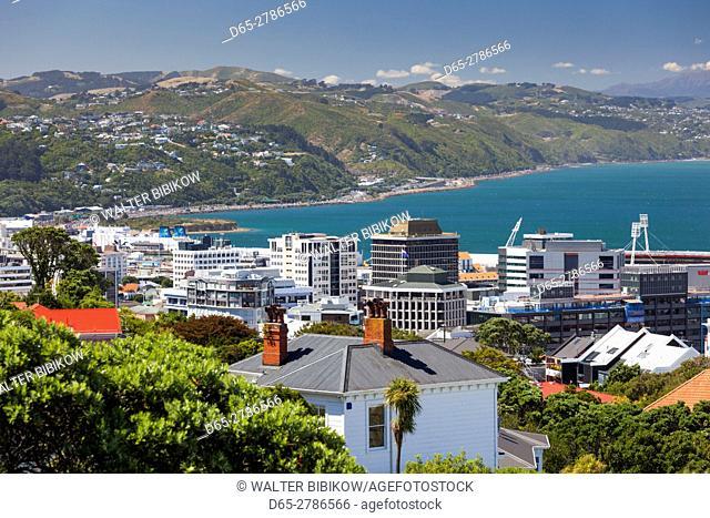 New Zealand, North Island, Wellington, city skyline from the Wellington Botanic Gardens