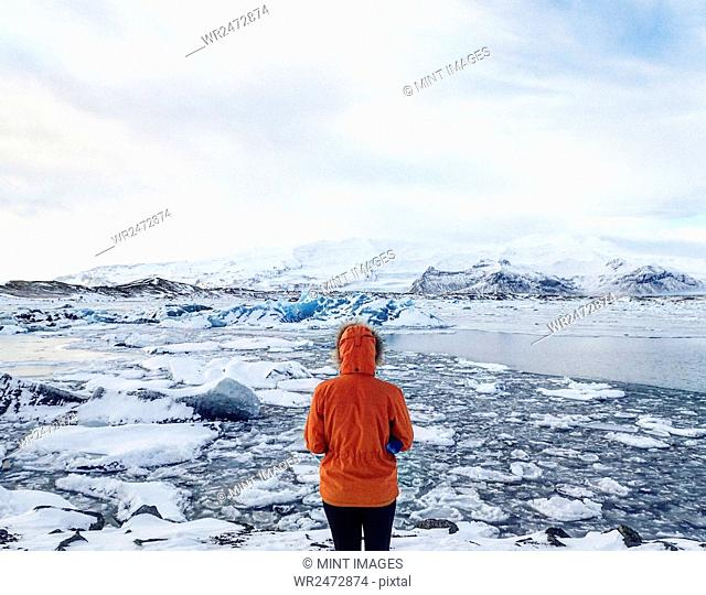 Person wearing a warm red jacket standing in the Arctic, overlooking frozen sea with ice sheets, mountains in the distance