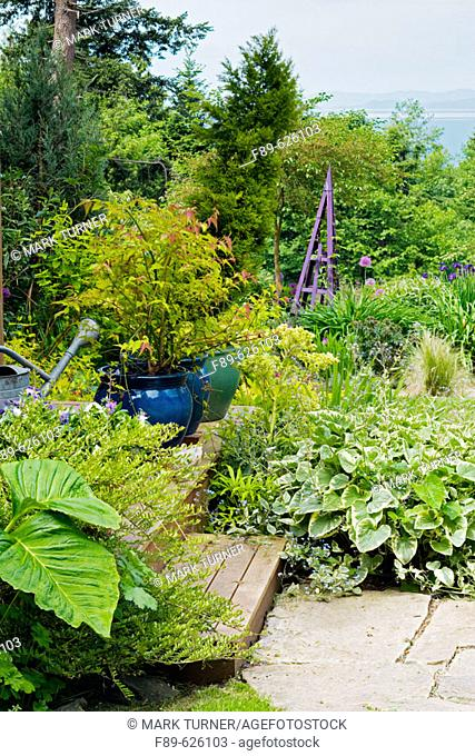 View over steps & flagstone path in perennial garden to Matia Island (Arisaema sp.). Wall, Lummi Is., WA
