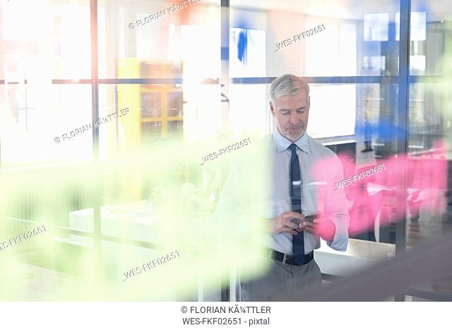 Mature businessman standing in office, using smartphone