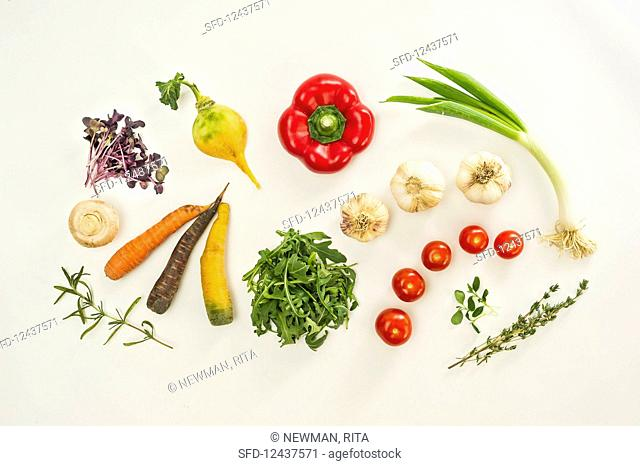 An arrangement of vegetables with herbs