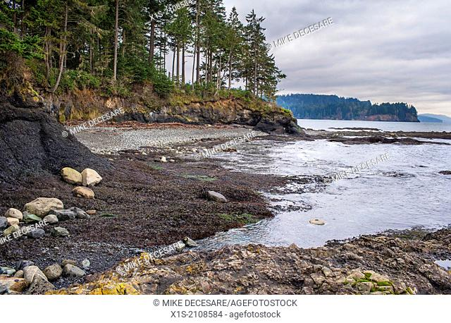 Marine Tidal Pools during low tide at Salt Creek Recreation Area along the Washington coastline