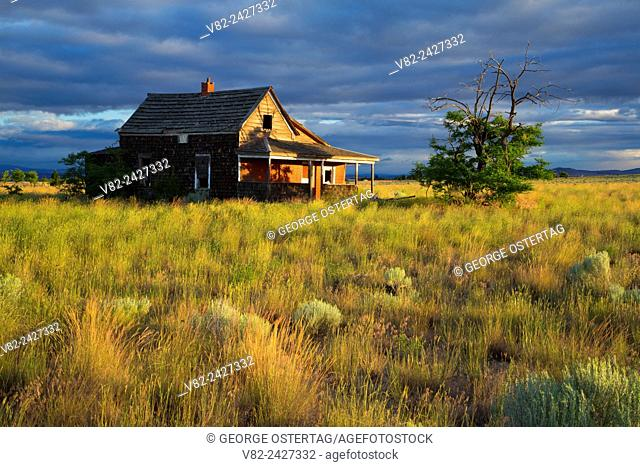 Abandoned homestead, Madras, Jefferson County, Oregon