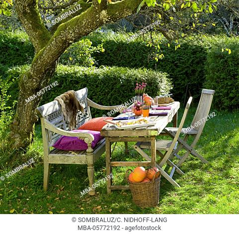 covered garden table with pumpkin pizza