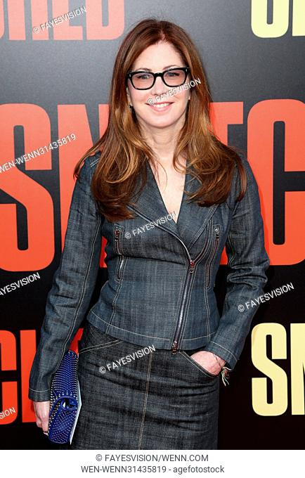 Los Angeles Premiere 'Snatched' at Regency Village Theatre - Arrivals Featuring: Dana Delaney Where: Westwood, California