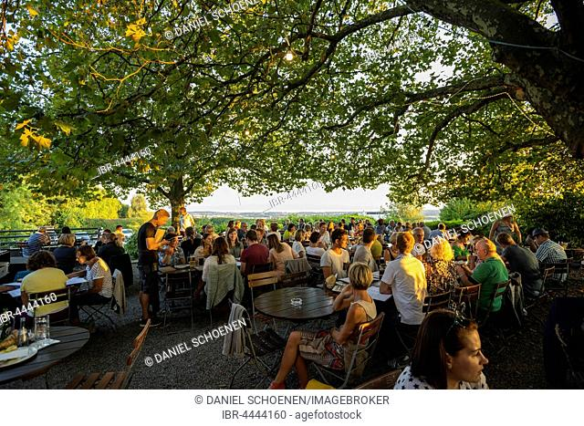 Beer garden, Gehrenberg, Markdorf, Lake Constance, Baden-Württemberg, Germany
