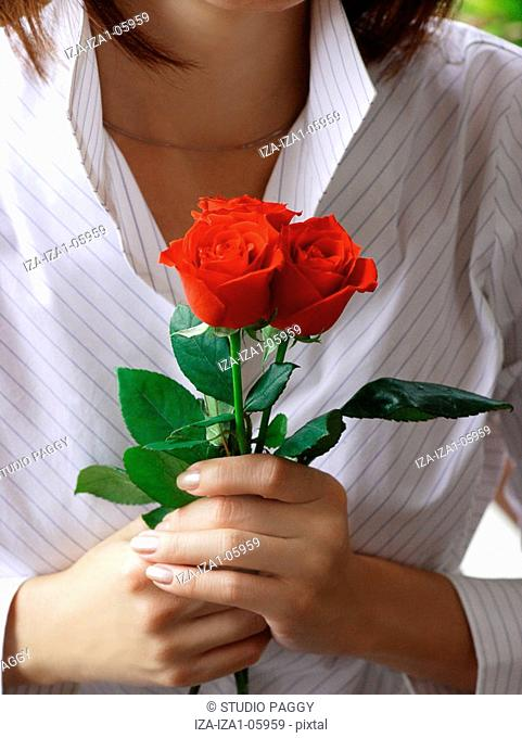 Mid section view of a woman holding roses