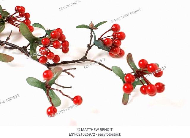 Faux Berry Branch