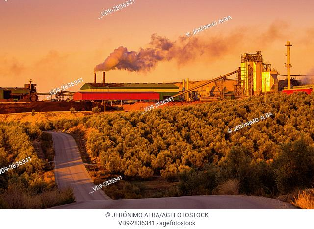 Olive oil refinery amidst olive groves near Lucena at sunrise, Cordoba Province, Andalusia, southern Spain Europe
