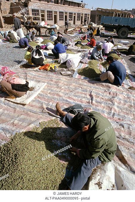 China, Xinjiang Province, Turpan, bazaar
