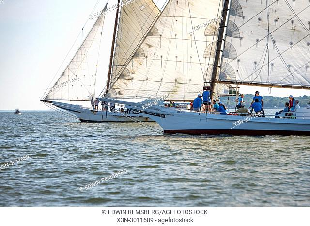 Two traditional skipjack boats crossing paths on the waters of the Chesapeake Bay during annual Deal Island Skipjack Races, Deal Island, Maryland. USA