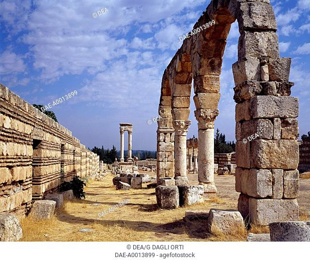 The remains of the portico of the Cardo Maximus from the Umayyad city built by the Caliph Al-Walid I, 7th-8th century, Bekaa Valley