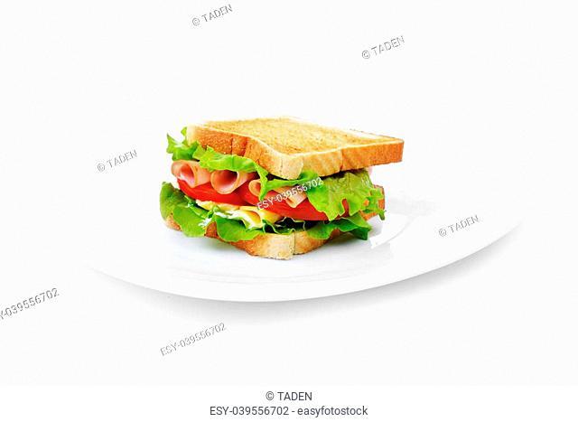 Fresh and tasty sandwich on white dish