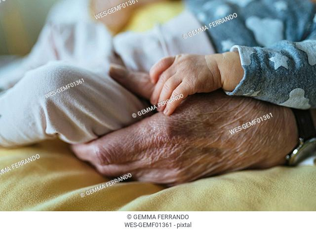 Great granddaughter's hand on great grandmother's hand