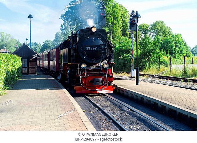 Brockenbahn, Brocken Railway, arriving at Wernigerode station, Wernigerode, Harz, Saxony-Anhalt, Germany