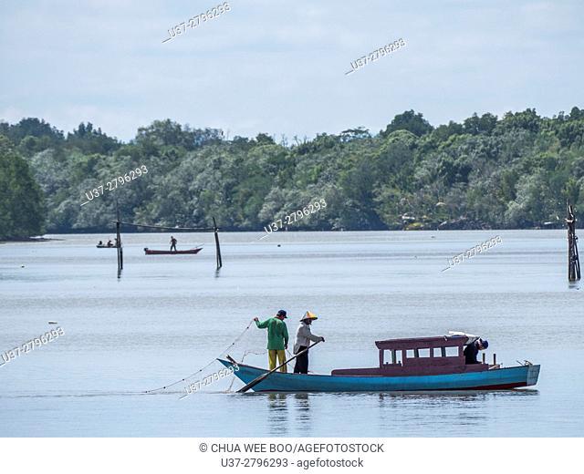 Catching prawns near Buntal Fishing Village. Sarawak, Malaysia
