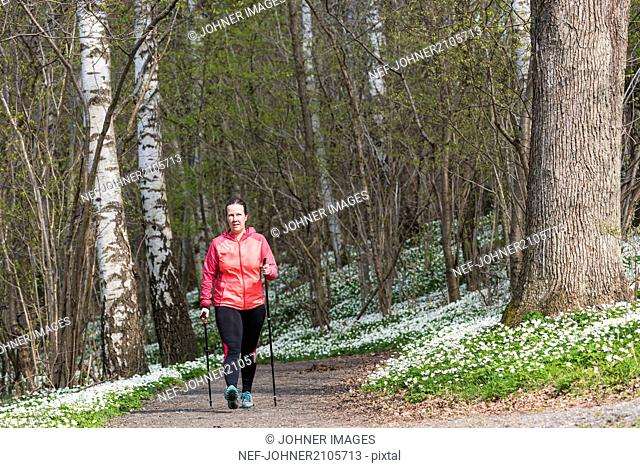 Woman Nordic walking in spring forest