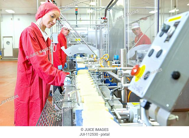 Quality control workers checking cheese on production line in processing plant