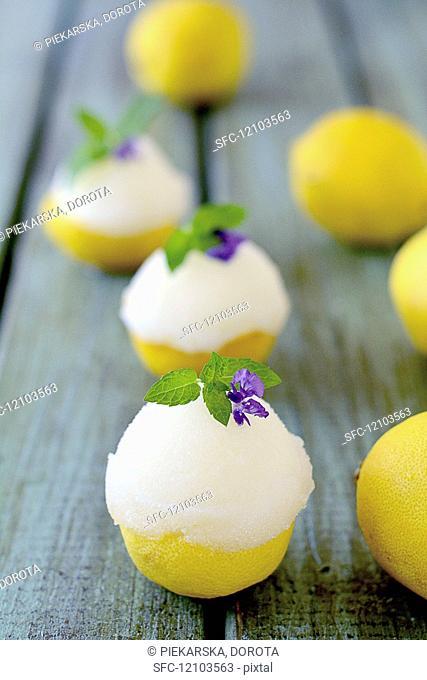 Lemon sorbet served in lemon halves