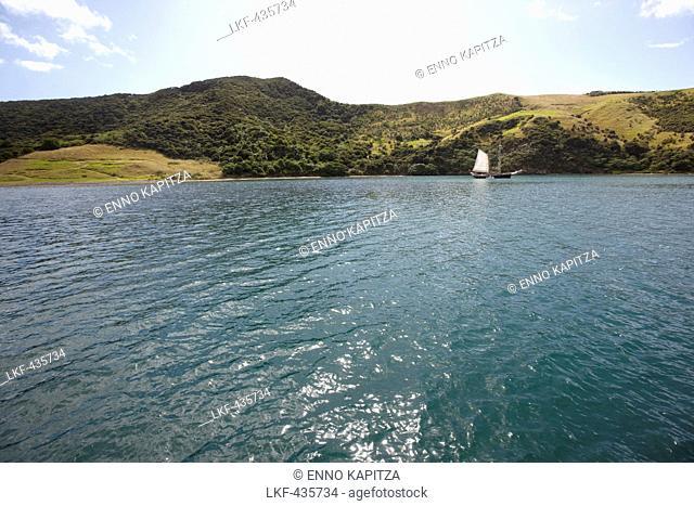 Sailing boat, Bay of Islands, Northland region, North Island, New Zealand