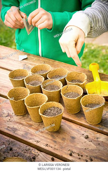 Boy and girl sowing bell pepper seeds in nursery pots, partial view