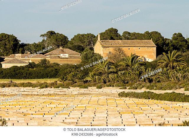 balsas calentadoras y evaporadoras de Flor de Sal d'Es Trenc, Salobrar de Campos, Campos del Puerto,Majorca, Balearic Islands, Spain