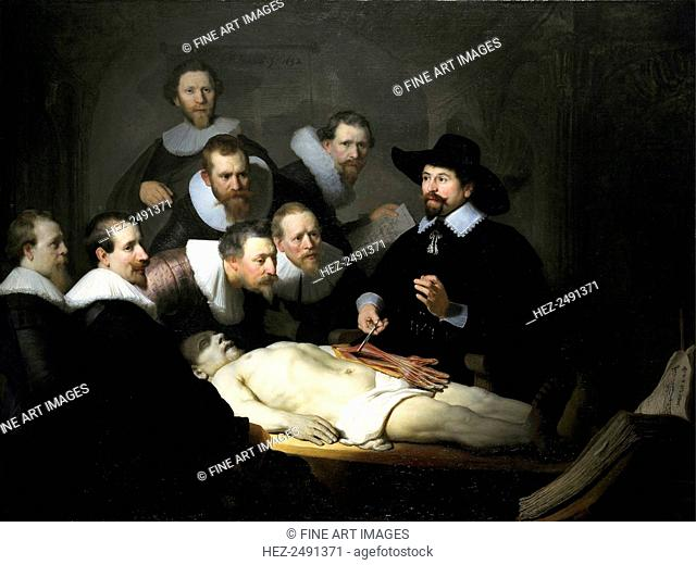 The anatomy lesson of dr Stock Photos and Images | age fotostock